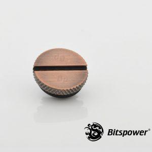 BP-BAWP-C09